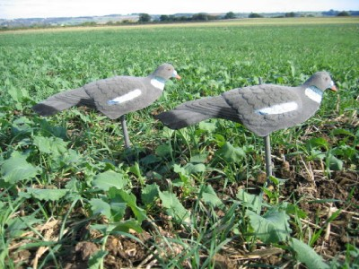 1/2 Flocked Pigeon Decoys