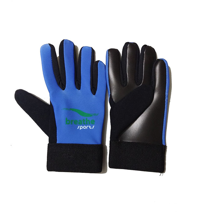 Adult Gloves - (Blue/Black)