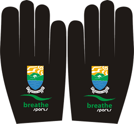 st-marys-club-crested-gaelic-glove.png